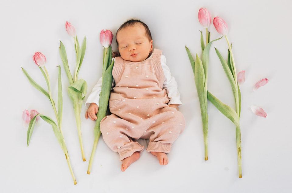 Frühlingsgefühle | Tulpen | Stadt Salzburg |